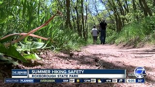 7 things to bring on summer hikes in Colorado