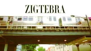 "Zigtebra ""Bay Bay"" Music Video"