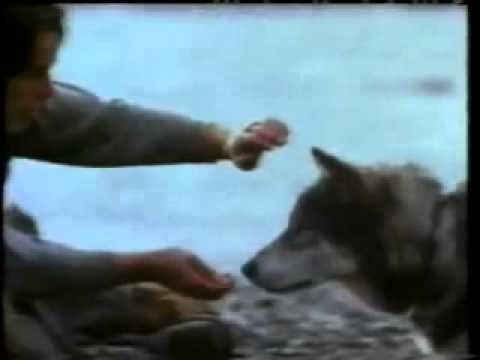 White Fang (1991) Official Trailer