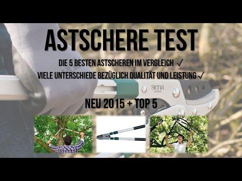 Astschere Test + Die 5 Besten Astscheren im Test