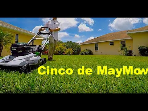 Ego 21″ Self Propelled Mower Review | 56 Volt Ego Power
