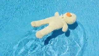 """EL SEÑOR PATO EN LA PISCINA ¡SUSCRÍBETE AHORA! : https://goo.gl/tsb52Y Hola, soy Lyna! En este nuevo video random les traigo al Señor Pato, que va por primera vez a una piscina! ♥ Like para más videos de este estilo! ♥ ↘️ ABRIR ↙️  ○ Compra mi libro """"Una Familia Anormal"""" aquí: https://goo.gl/8cUj8o  ¡SUSCRÍBETE A MIS OTROS CANALES!   ○ Comedia: https://goo.gl/KiJXqR ○ Vlogs: https://goo.gl/Fr9Lhf ○ Juguetes: https://goo.gl/n8KLh5 ○ Inglés: https://goo.gl/MH5owP  ○ Compra mi merchandising oficial aquí: https://goo.gl/YLqKPa  ¡SÍGUEME EN MIS REDES SOCIALES!  ○ Instagram: https://instagram.com/Lynavallejos ○ Twitter: https://twitter.com/srtalyna ○ Facebook: https://facebook.com/Lynayoutube  EL SEÑOR PATO EN LA PISCINA"""
