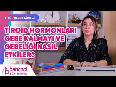 Tiroid Hormonları Gebe Kalmayı ve Gebeliği Nasıl Etkiler? –  Prof. Dr. Berfu Demir