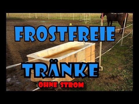 Frostfreie / frostsichere Pferdetränke im Winter | Pferde Hoschi