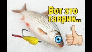 Ловля рыбы на пыздрик