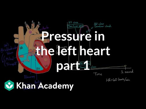 A thumbnail for: Pressure volume loops