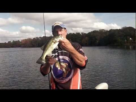 WACKY RIGS AND CHATTERBAITS FALL BASS TIPS