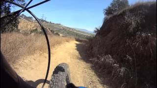Rattlesnake and Native Oak trails.