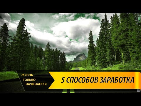 Дмитрий черемушкин опционы