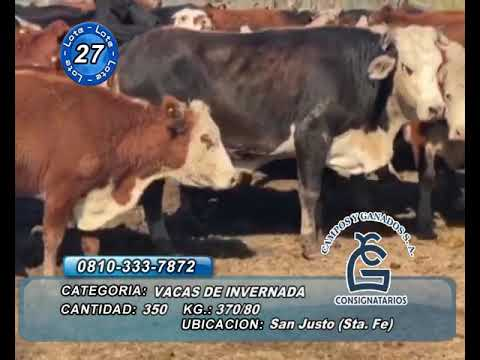 Lote VC INV - San Justo Sta FE
