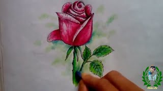 preview picture of video 'গোলাপ ফুল। How to Draw a Rose with plastic crayons for kids.Live butterfly on Rose\Kishor Art.'