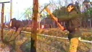 preview picture of video 'Břeclav 1989 - sametová revoluce 6.část - železná opona'