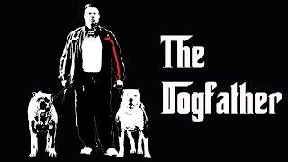 The Dogfather: Former Mobster Turns Animal Saviour