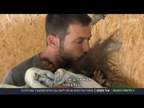 הישראלי שמציל מאות חיות בר