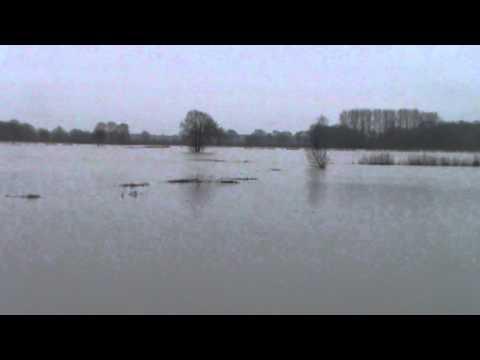 Hoogwater van de Maas in Vierlingsbeek en Groeningen
