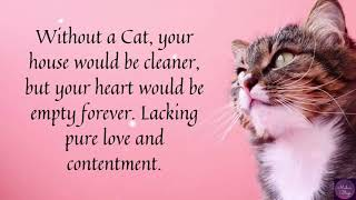 Cat Day | Cats love Whatsapp Status! | Cute Quotes for Cats | World Cat Day 2020 | #Cats #Kittens |