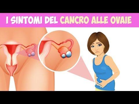 Organi femminili del sesso orale