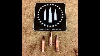 The Shooter's Mindset Episode 212 Gallant Bullets