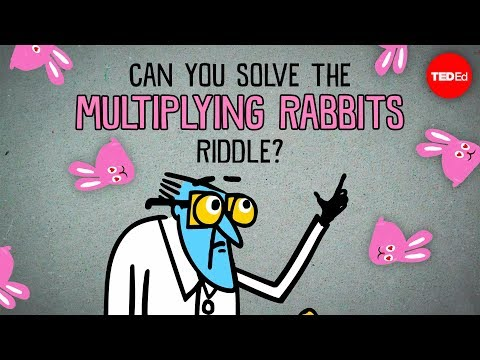 Can You Stop the Multiplying Rabbits in this Riddle?