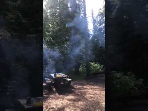 Video Of Giant White Pine Campground, ID