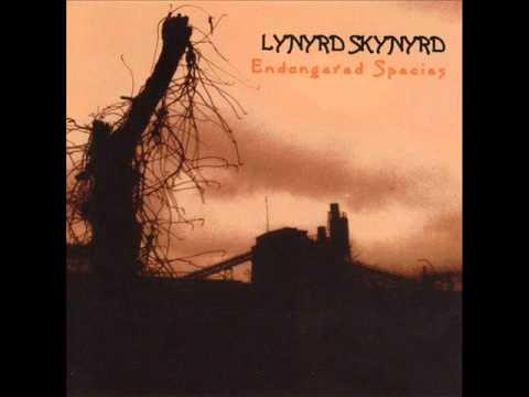 Lynyrd Skynyrd - Am I Losin'.wmv