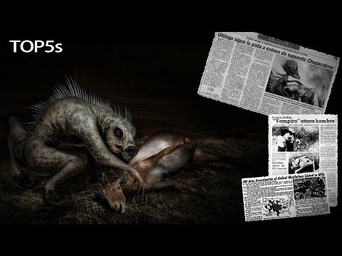 5 Nightmarish Facts About The Mysterious & Legendary Chupacabra...