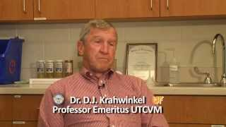 Original Faculty Member Talks about University of Tennessee College of Veterinary Medicine