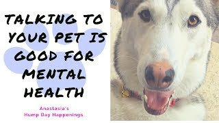 Talking to Your Pet is Good For Mental Health