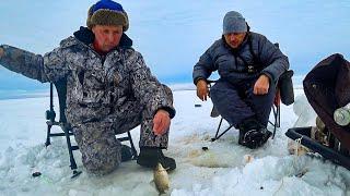 Где хорошо клюет рыба в челябинской области 2020
