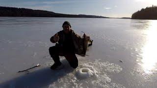 Ловили на озере янисъярви