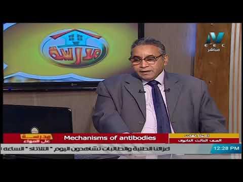 أحياء لغات للصف الثالث الثانوي  2021 -  الحلقة 27 – Mechanisms of antibodies