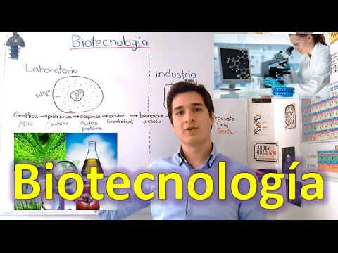Qué es la Biotecnología y en dónde se puede aplicar? EN 6 MINUTOS