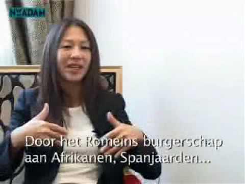 prof. dr. Amy Chua Hypermacht