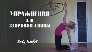 Комплекс упражнений для здоровой спины #BodySculpt