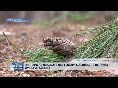 Новости Псков 23.01.2020 / В Великих Луках откроют экопарк на 22 гектара