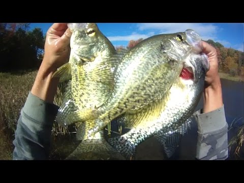 Lure Fishing #85 – Berkley Gulp Minnow Jig Fishing for Pond Crappie and River Walleye