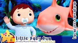 Aprender El baile de bebé tiburón | Canciones Para Niños | Little Baby Bum