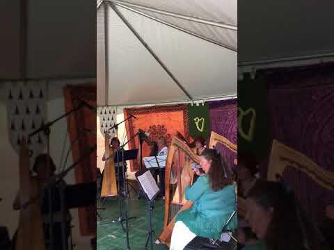Cara Harp Ensemble playing for Highland Games, Mount Vernon, WA