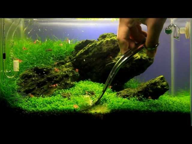 Just Aquascaping - Maintenance Mini M Iwagumi