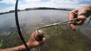 Рыбалка на оке в ступинском районе