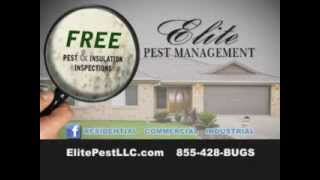 preview picture of video 'Pest Control Parkersburg | Elite Pest Management'