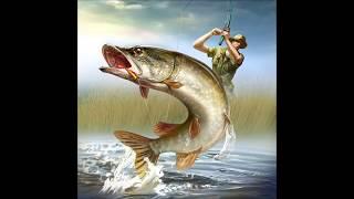 Как правильно приготовить нут для рыбалки