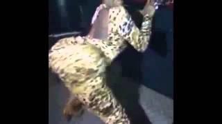 Jimama likicheza nipe mgongo ya johnnybho