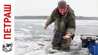 Ловля ПЛОТВЫ ЗИМОЙ Зимняя рыбалка на мормышку Видео 2017 Уроки