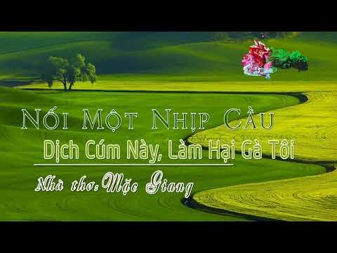 8. Dịch Cúm Này Làm Hại Gà Tôi