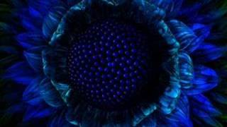DJ Tiesto Ft. Faithless - Tarantula