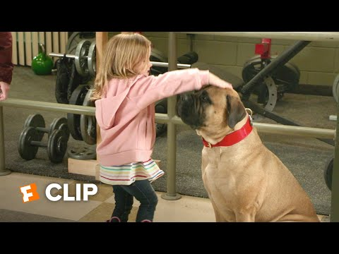 Playing With Fire Movie Clip - Sparkle Pony (2019) | Movieclips Coming Soon