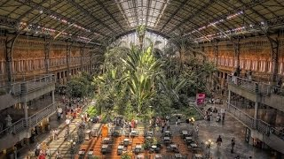 preview picture of video 'Madrid Atocha Railway Station'