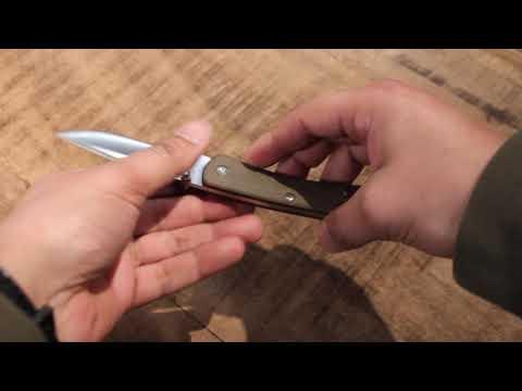 Buck 110 Slim EDC Folding Hunter Pro OD Green