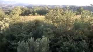 preview picture of video 'Volo in Mongolfiera Taverna di Montalto Uffugo'